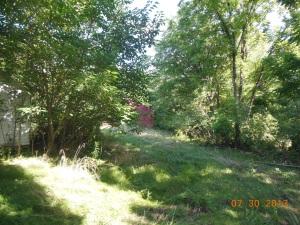 Rockdale Mill 5